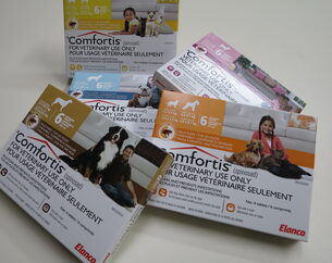 Comfortis oral flea treatment for dogs and cats is available from your veterinarian